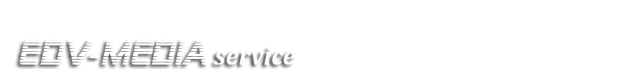 EDV-Mediaservice Logo
